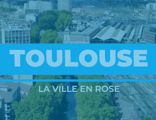 [Antenne Bee 🐝] Toulouse – La Ville en rose !