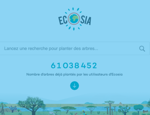 Ecosia, le moteur de recherche écologique qui lutte contre la déforestation