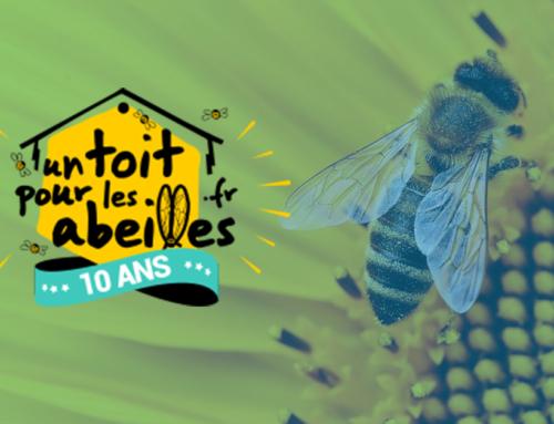 Bee, parrain d'Un Toit Pour Les Abeilles