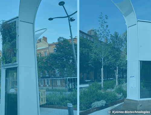 Toulouse : un arbre à micro-algues pour absorber le CO2